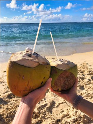 Flic En Flac Beach coconut
